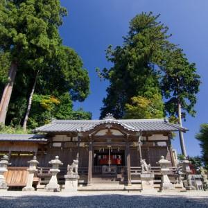 春日神社(針町)