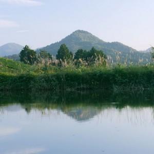都介野岳(景観)
