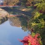 橋から見た竜田川