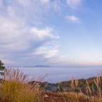若草山からの雲海