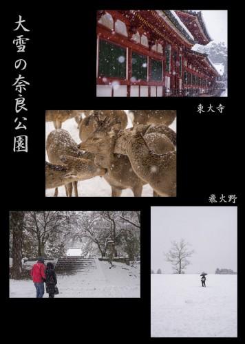 大雪の奈良公園針テラスHP