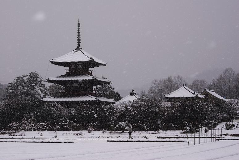 法起寺の画像 p1_24