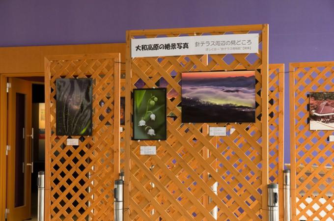 大和高原の絶景写真を展示