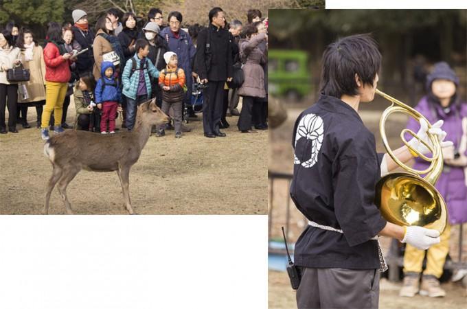 shikayose01