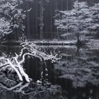 雪の龍王ヶ淵